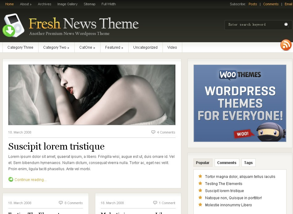 Woothemes wordpress主题-fresh news