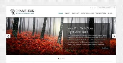 Elegantthemes wordpress企业主题-Chameleon