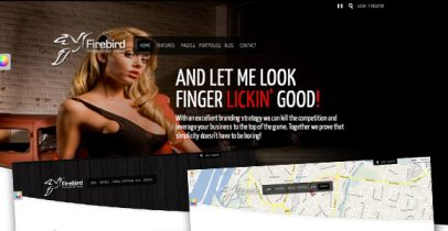 ThemeForest wordpress企业主题-Firebird