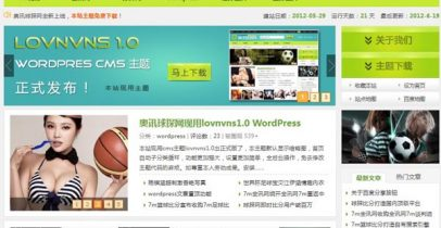 WordPress cms主题 - lovnvns