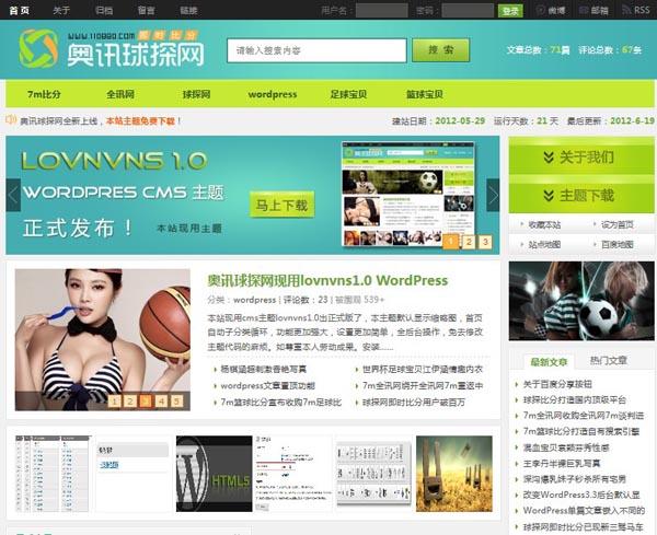 WordPress cms主题 - lovnvns