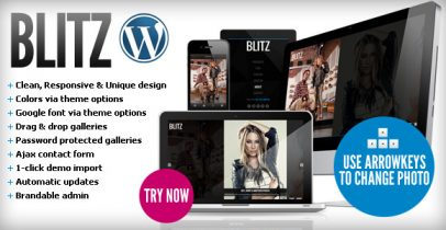 ThemeForest wordpress图片主题 - Blitz
