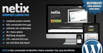 产品介绍类WordPress主题 - Netix