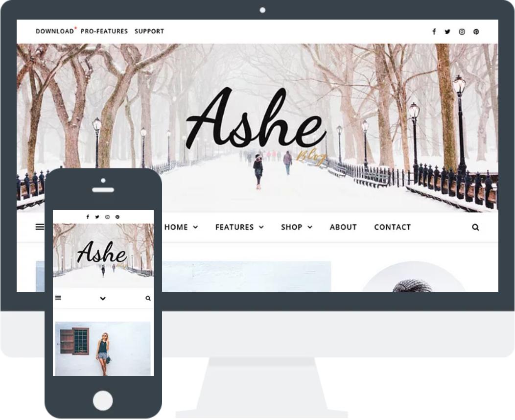 Ashe – 免费博客主题 WordPress主题
