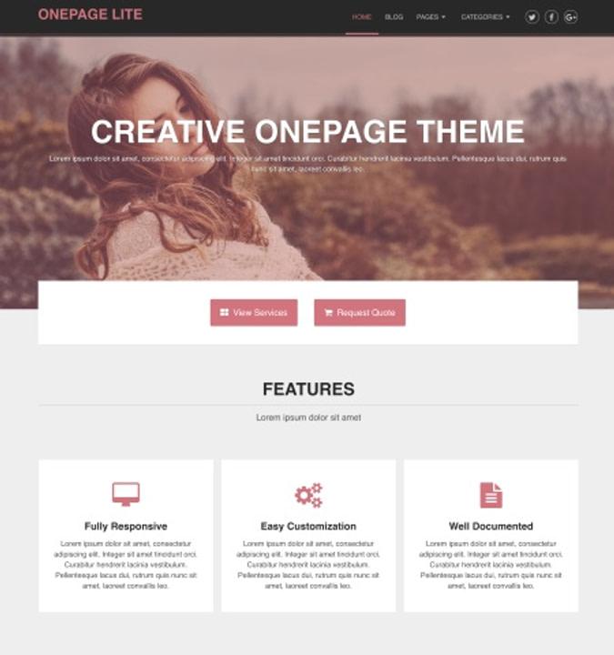 Onepage 一款单页WordPress主题