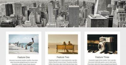 Radiate 一款免费的WordPress博客主题